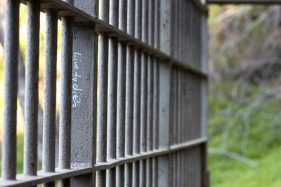 סדר יום, זכויות וביקורים של אסירים בכלא שש