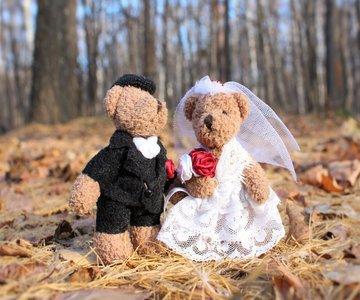 דובונים נשואים מוקטן לאתר
